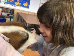Zooterapie ve IV. třídě