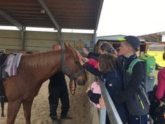 IV. třída na koni